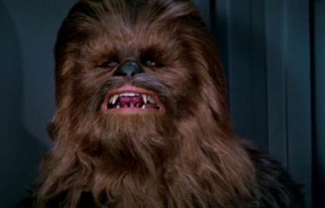 Chewie_DS1